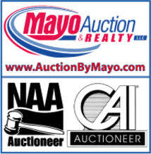Auction By Mayo
